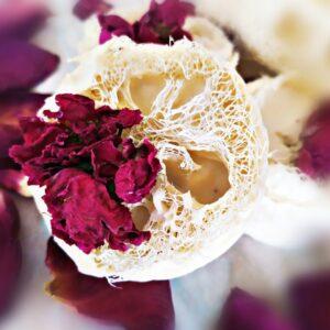 Soap rose & loofah